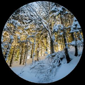 winter_HaS_5